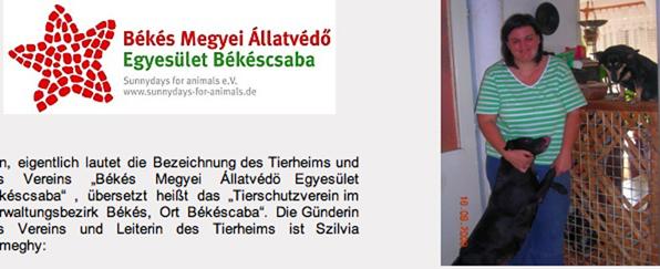 tierheim_ungarn