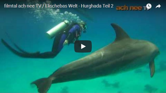 Elischebas Welt Hurghada
